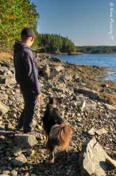 Exploring the beach by Harbor Trail