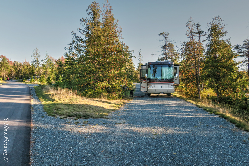 Np Campground Review Schoodic Woods Acadia National