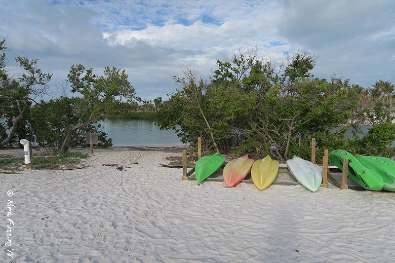 view of kayak rental  u0026 launch area     sp campground review  u2013 curry hammock state park marathon fl      rh   wheelingit us