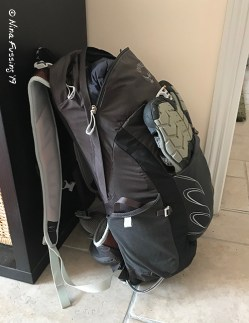 Paul's Osprey 22 Camino pack
