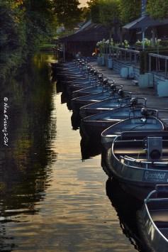 Boat rentals at dusk