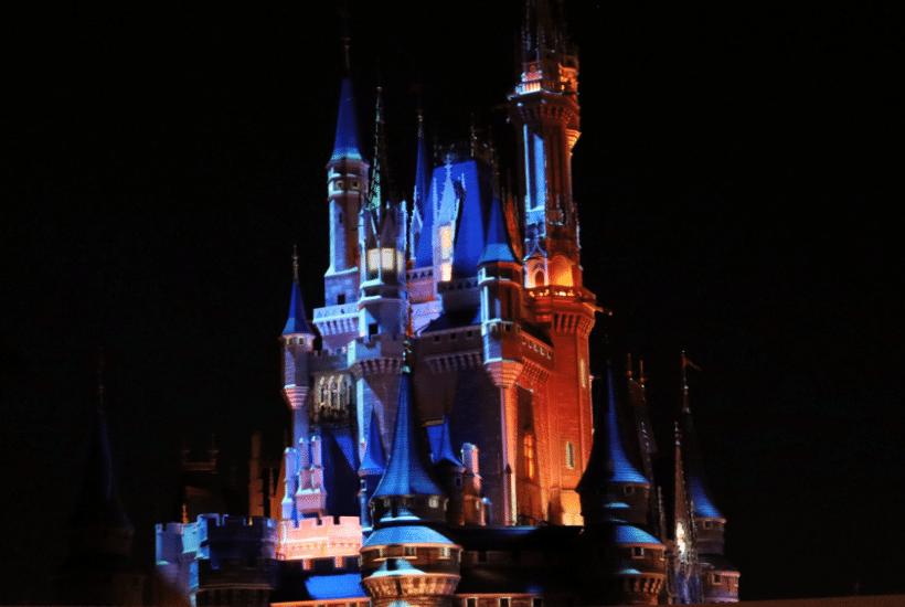Disney World: Expectations vs Reality