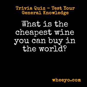 Wine Trivia Questions_Cheapest in the World