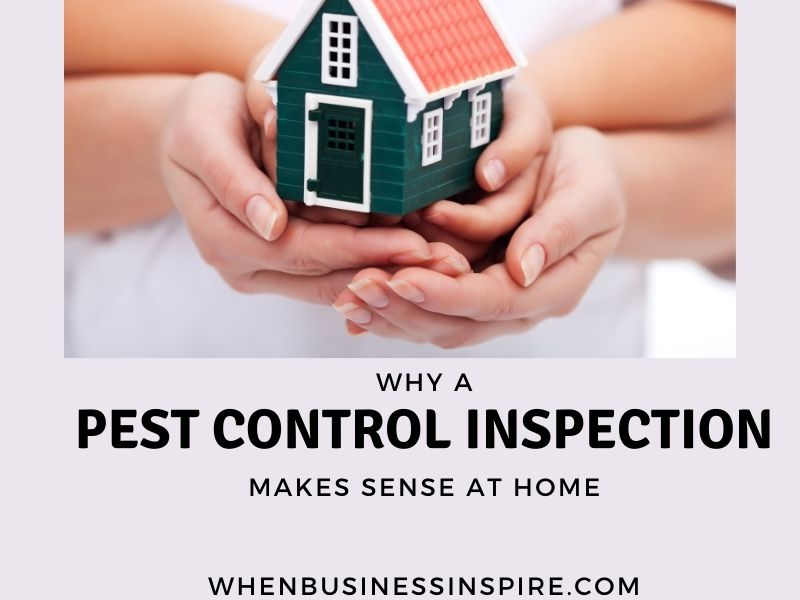 Home pest control inspection
