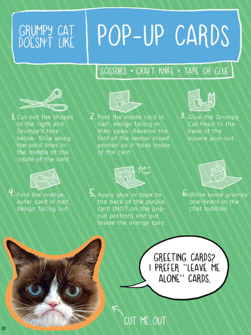 Grumpy Cat Doesn't Like Pop-Up Cards