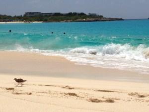 Mullet Bay Beach St. Maarten