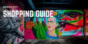 Shopping guide mexico city