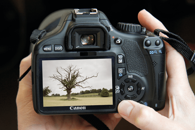 10 Ways to Improve your Photography