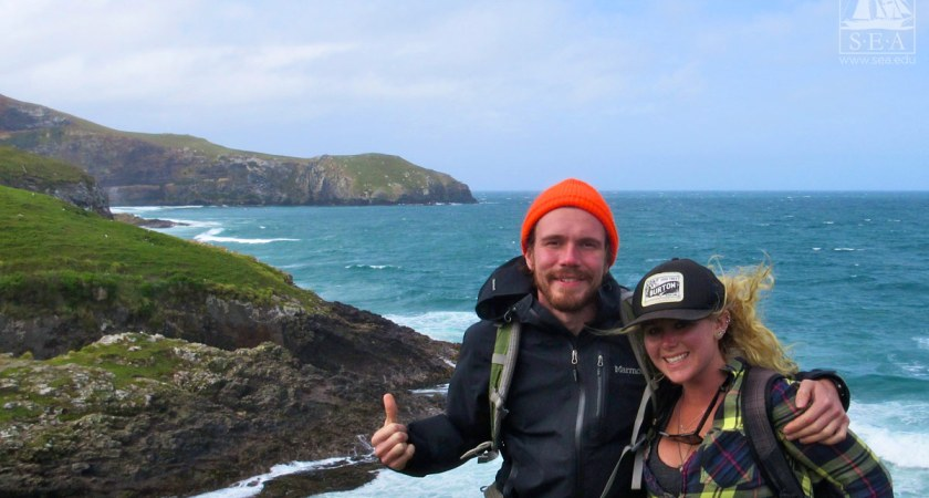 Study Abroad in New Zealand – Key Pros and Cons