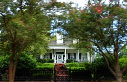 Knock, Knock ~ Natchez, Mississippi