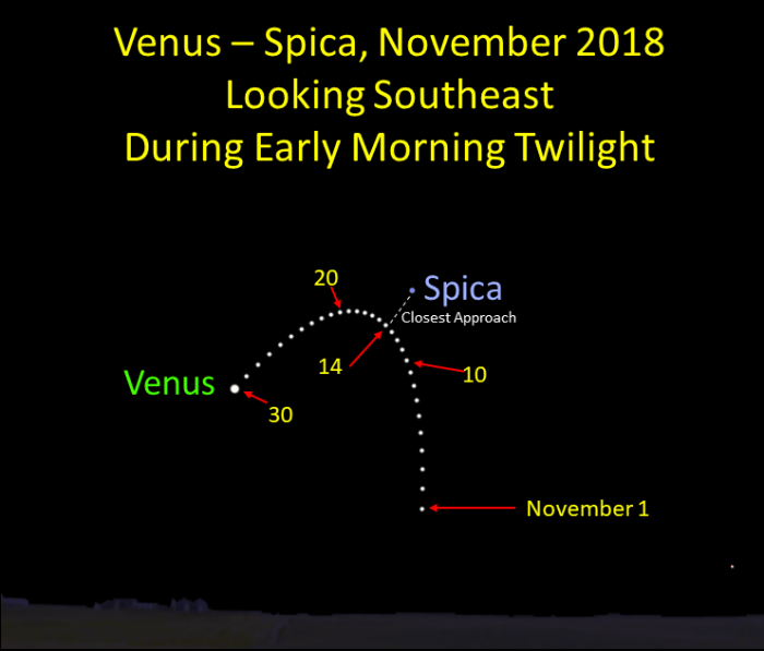Venus approaches Spica during November 2018