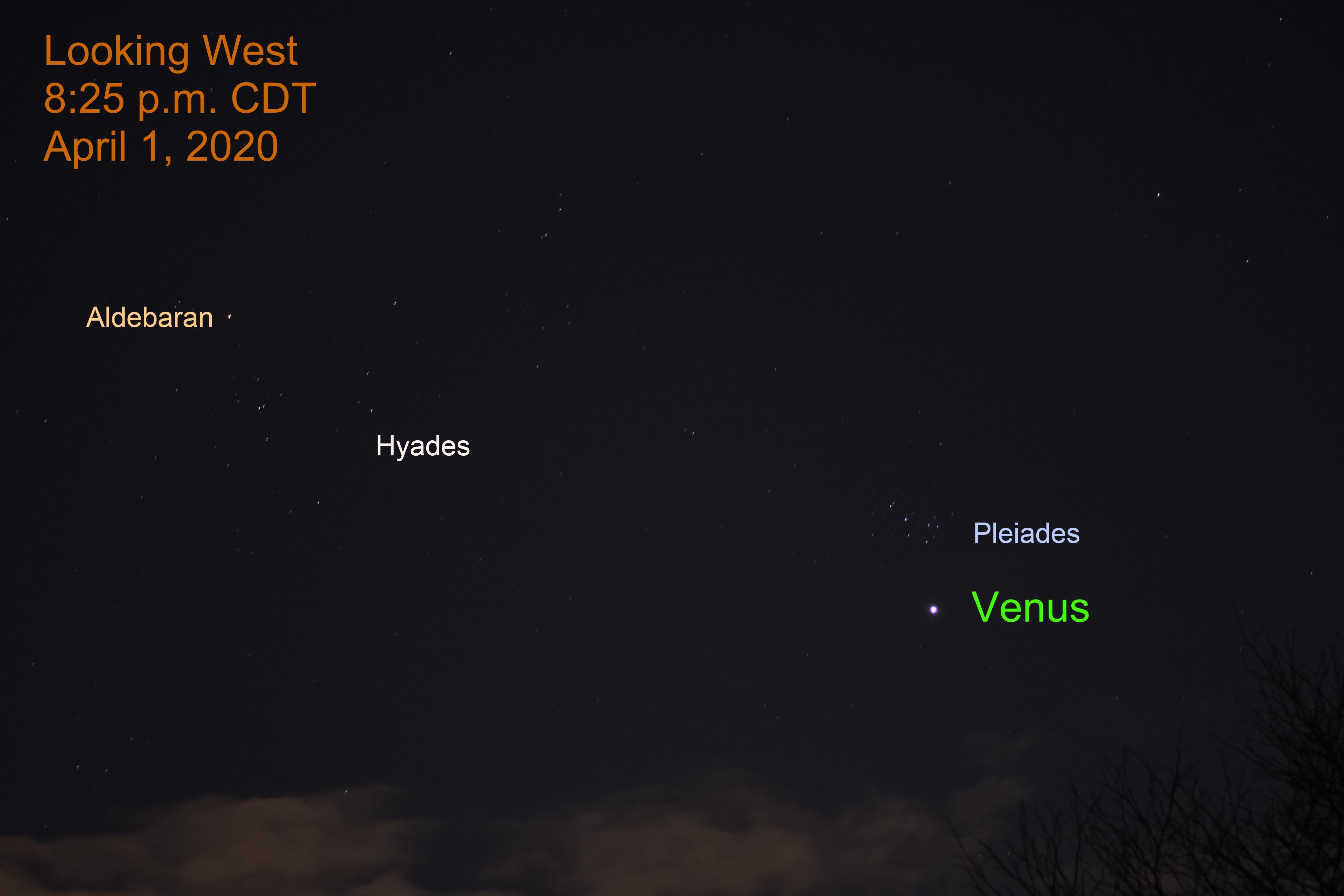 Venus and Pleiades, April 1, 2020