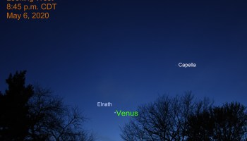 Venus and Elnath, May 6, 2020