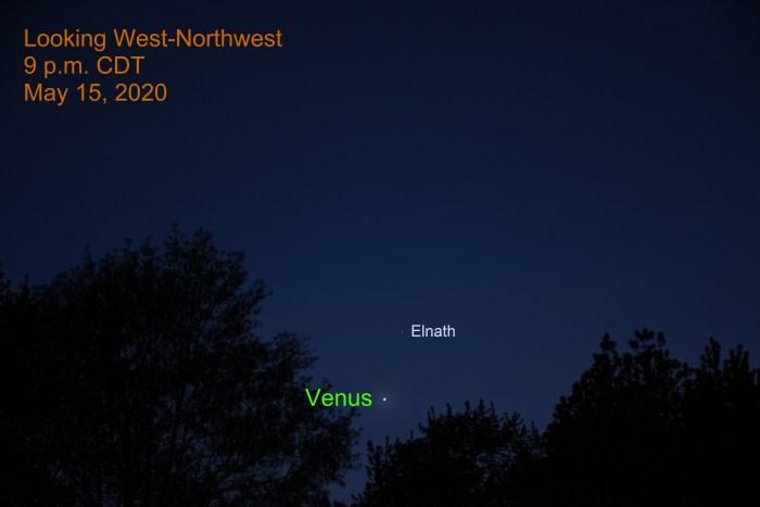 Venus and Elnath, May 15, 2020