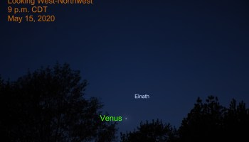 Venus and Elnath, May 15, 2020