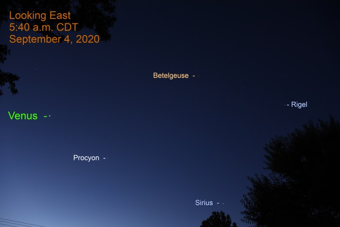 2020, September 4: Venus, Sirius, Procyon, and Orion