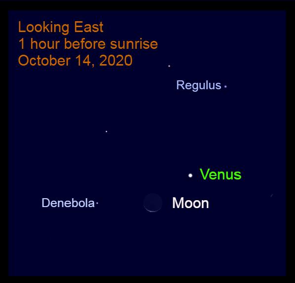 Venus, Moon in Leo, October 14, 2020