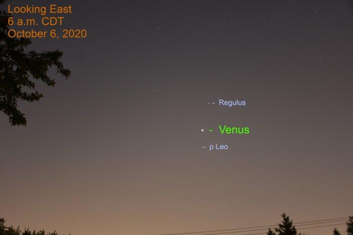 Venus in Leo, October 6, 2020