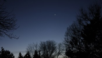 2020, November 28: Venus in the morning sky.