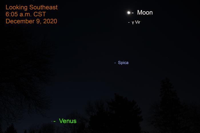 Moon, Spica, Venus, December 9, 2020