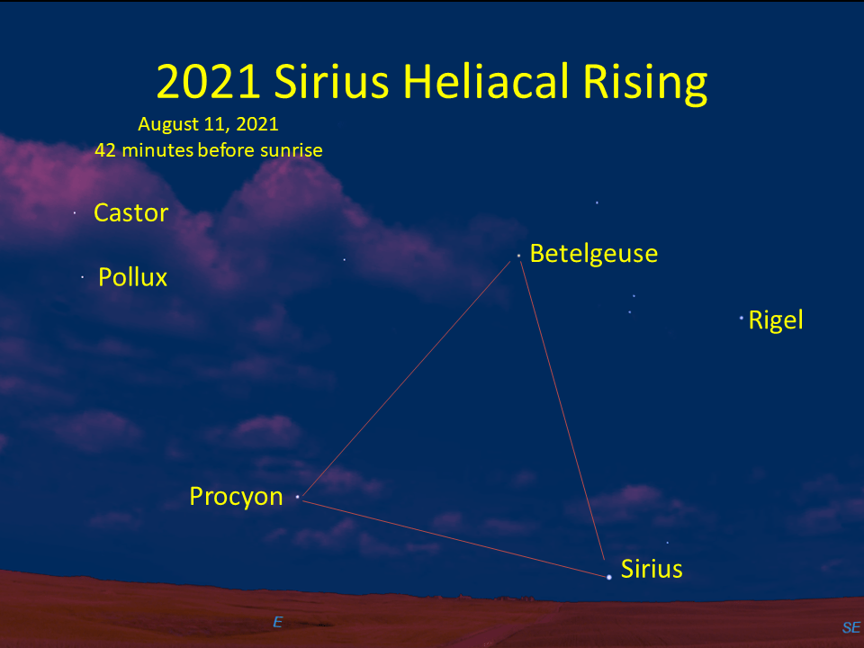 Sirius makes its first morning appearance on August 14 or August 15, 2021, depending on the clarity of the sky near the horizon.