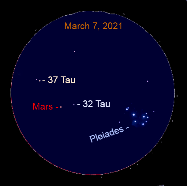2021, March 7: A binocular view of Mars and the background stars.