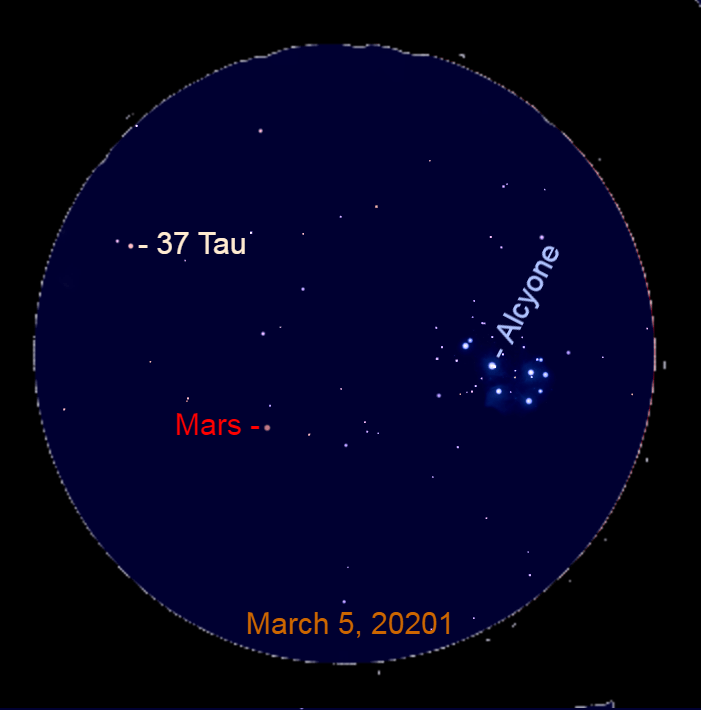 2021, March 5: Use a binocular to look for Mars near the Pleiades. It is trekking toward 37 Tauri (37 Tau).