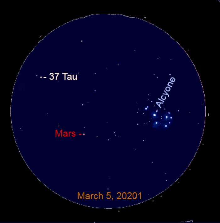 2021, March 5: Use a binocular to look for Mars near the Pleiades. It is trekking toward 37 Tauri (37 Tau).