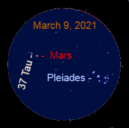 2021, March 9, 2021: With a binocular spot the starfield around Mars. It includes the Pleiades star cluster and the star 37 Tauri (37 Tau).