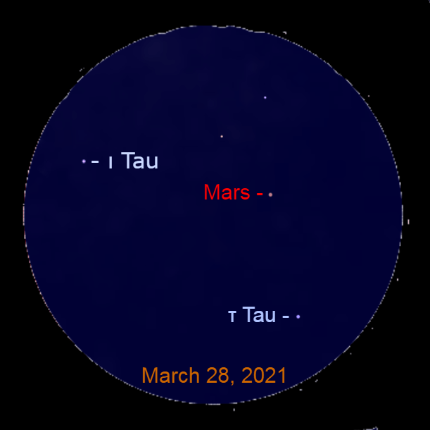 2021, March 28: This binocular view shows Mars with the stars Tau Tauri (τ Tau) and Iota Tauri (ι Tau).