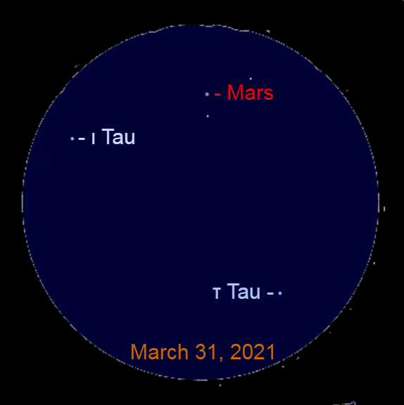 2021, March 31: Through a binocular, Mars is 4.1° to the upper left of Tau Tauri (τ Tau) and 2.7° to the upper right of Iota Tauri (ι Tau).