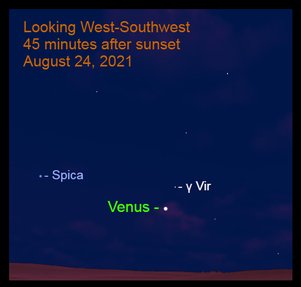 2021, August 24: Venus passes 2.5° to the lower left of Gamma Virginis (γ Vir).