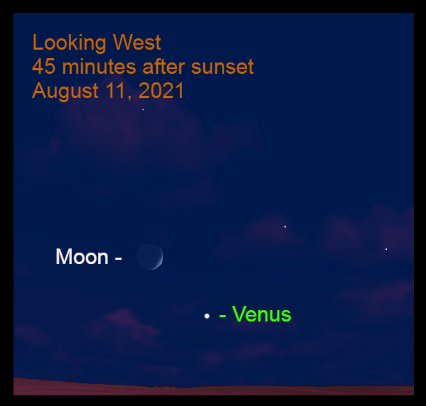 2021, August 11: The crescent moon is 8.1° to the upper left of Venus.