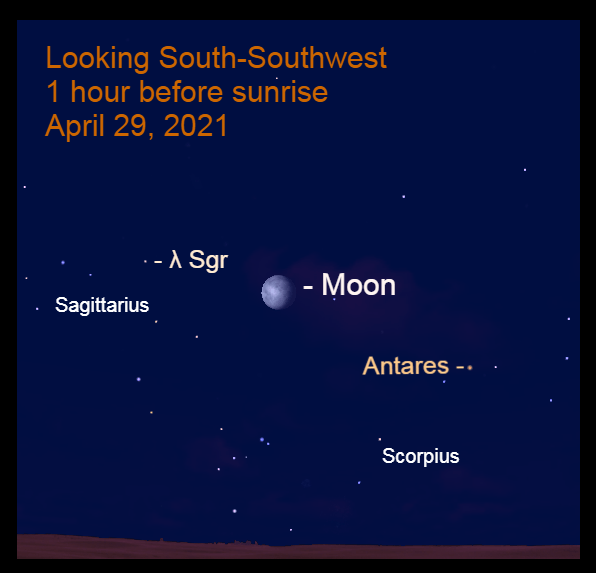 2021, April 30: The bright moon is in the southern sky before sunrise, between Antares and Kaus Borealis (λ Sgr).