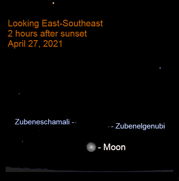 2021, April 27: Two hours after sunset, the bright moon appears caught in the pincers of the celestial Scorpion.