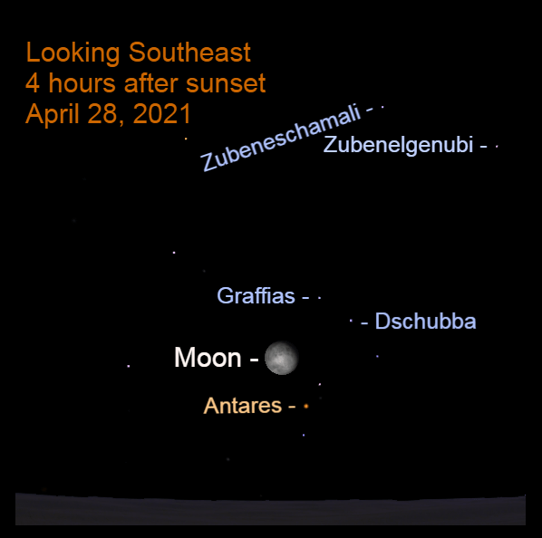 2021, April 28: Around midnight, the moon is low in the southeast, to the upper left of Antares.