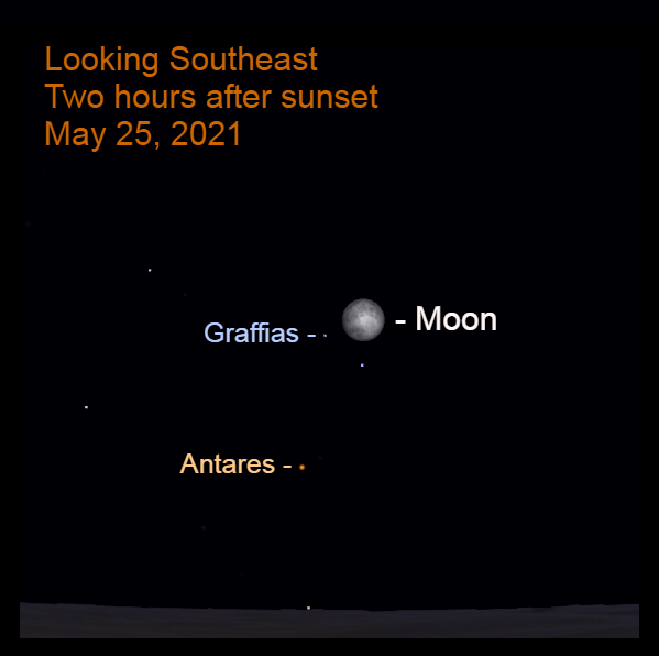 2021, May 25: Two hours after sunset, the bright moon is 3.2° to the upper right of Graffias, the second brightest star in Scorpius.