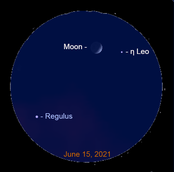 2021, June 15: Through a binocular notice Eta Leonis (η Leo) near the lunar crescent.