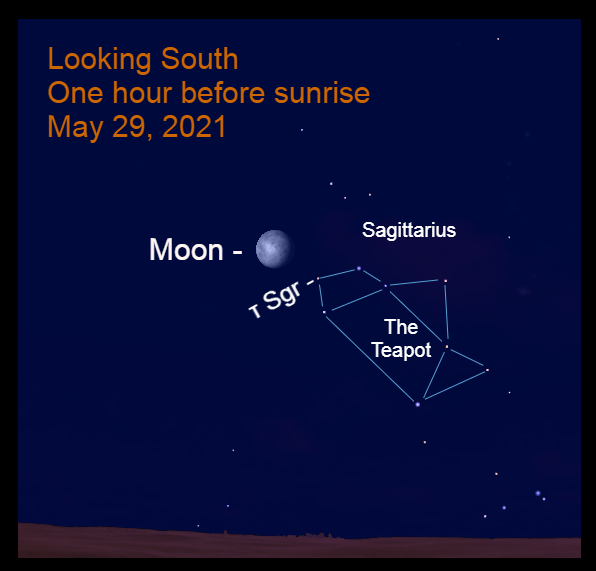 2021, May 29: One hour before sunrise, the bright moon is near the handle of the Teapot of Sagittarius. Use a binocular to see the starfield.