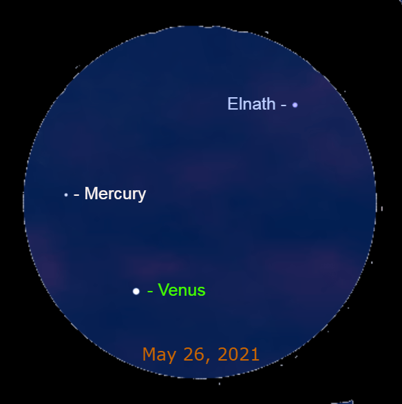 2021, May 26: Through a binocular dim Mercury is 2.3° to the upper left of brilliant Venus. The star Elnath is 4.7° to the upper right of Mercury.