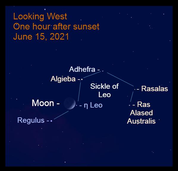 2021, June 15: The crescent moon is 1.1° to the left of the star Eta Leonis (η Leo).