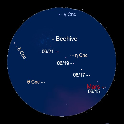 2021, June 15 – June 22: Through a binocular, watch Mars approach the Beehive star cluster. The cluster is in a box made by Gamma Cancri (γ Cnc), Delta Cancri (δ Cnc), Eta Cancri (η Cnc) and Theta Cancri (θ Cnc).