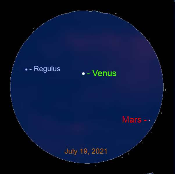 2021, July 19: In a binocular brilliant Venus is 2.6° to the right of Regulus and 3.8° to the upper left of Mars.