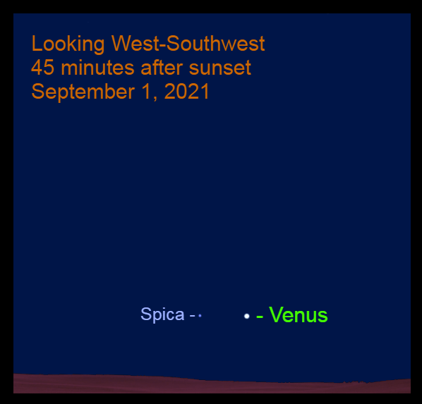 2021, September 1: Forty-five minutes after sunset, Venus is 4.7° to the right of Spica.