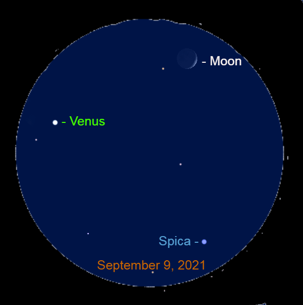 2021, September 9: Through a binocular, Venus, the moon, and Spica easily fit into the same field of view.