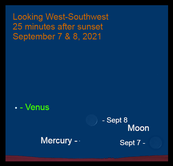 2021, September 7& 8: The thin moon appears near Mercury on these evenings. This chart shows them at 25 minutes after sunset.