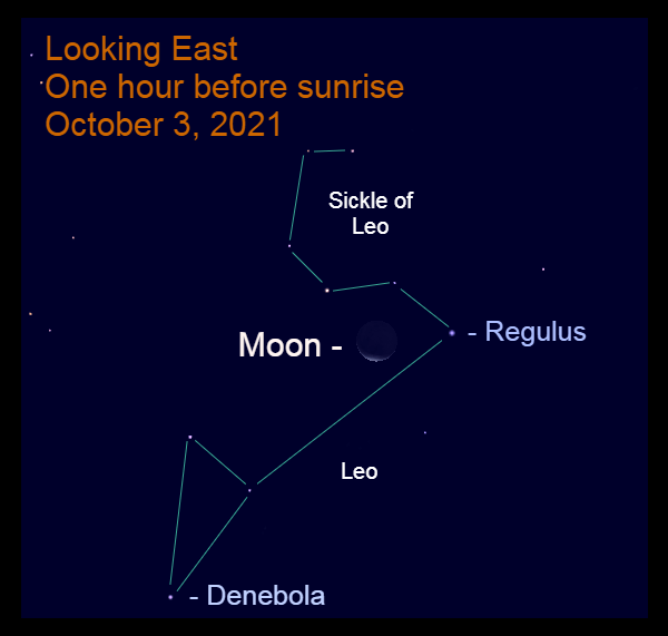 2021, October 3: One hour before sunrise, the thin lunar crescent is 4.7° to the lower left of Regulus.