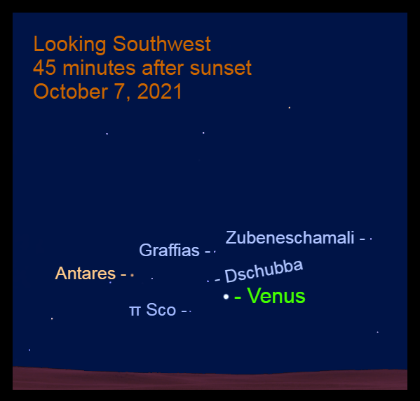 2021, October 7: Forty-five minutes after sundown, Venus is low in the southwest, 2.3° to the lower right of Dschubba.