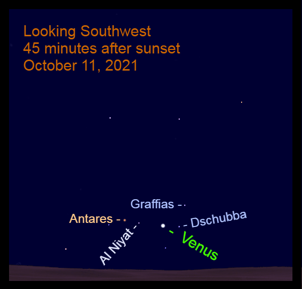 2021, October 11: After sunset, Venus is between Dschubba and Al Niyat.