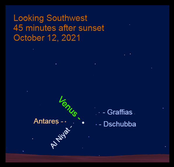 2021, October 12: Venus is above a line from Dschubba to Al Niyat.